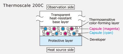Thermoscale Principle