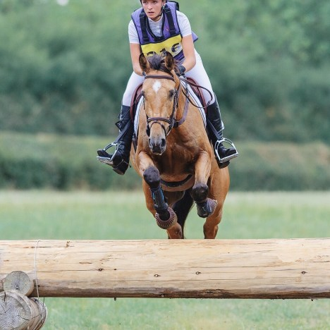 In Due Horse November Round up: A horsey photo shoot, a very wet one day event & a momentous cross pole!