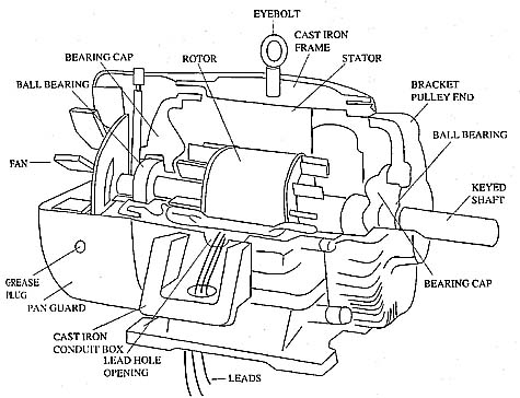 Three-Phase Motor Components