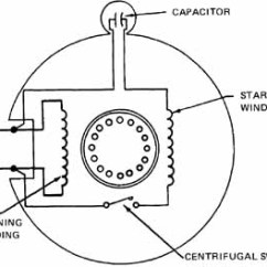 Single Phase Capacitor Start Induction Motor Connection Wiring Diagram 1999 Honda Civic Ignition Motors