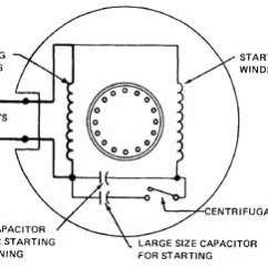 Wiring Diagram 220v Capacitor Start Motor Cat Single Phase Run | Get Free Image About