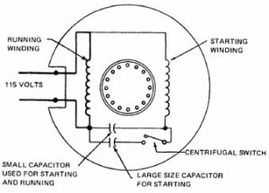 Capacitor Run Motor Diagram  impremedia