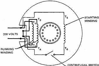 single phase capacitor start induction motor connection wiring diagram lenel 2220 typical control database motors hayward 7 dual voltage connected for 230 volts