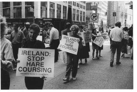 Protesters against Irish hare coursing outside Ireland's New York consulate