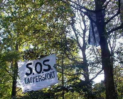 het Lappersfortbos werd na een jarenlange strijd voor een groot deel beschermd.