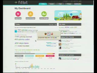 FitBit – This Tiny Thing is Going to Be Huge!