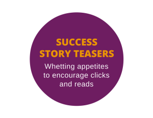 Success story teasers for the web