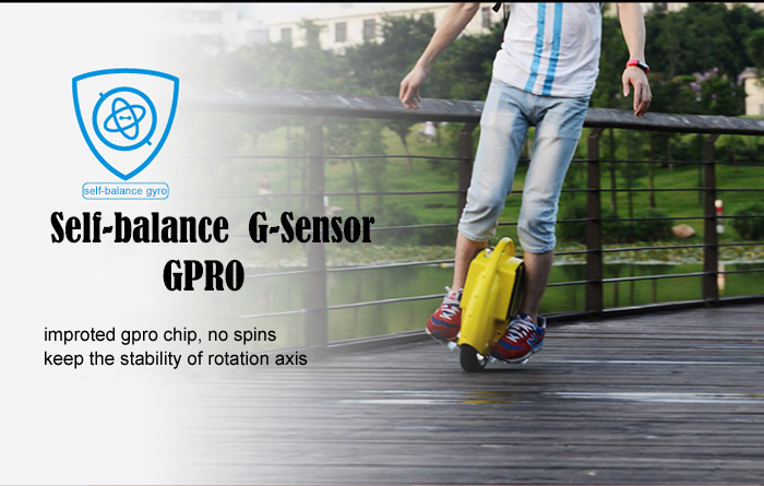 Portable Gyroscopic Electric Unicycle