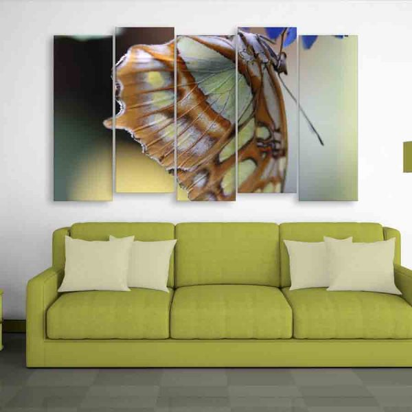 Multiple Frames Butterfly Wall Painting (150cm X 76cm)