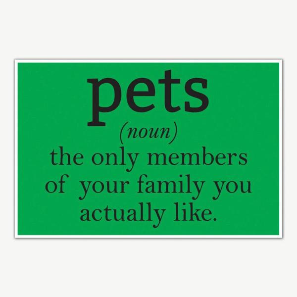 Pets Definition Humor Poster