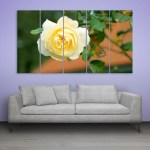 Multiple Frames Beautiful Yellow Rose Wall Painting for Living Room