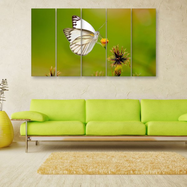 Multiple Frames Beautiful Butterfly Wall Painting for Living Room