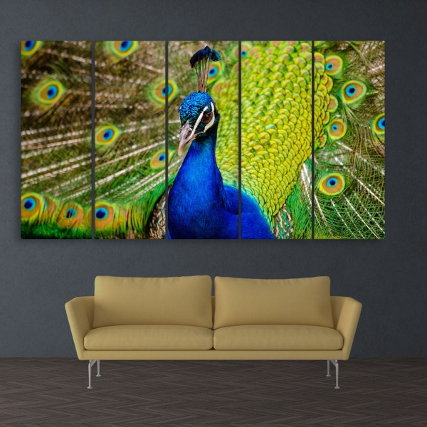 Multiple Frames Beautiful Peacock Wall Painting for Living Room