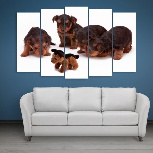 Multiple Frames Beautiful Puppies Wall Painting for Living Room