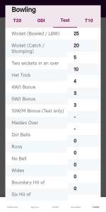 bowling test match point system