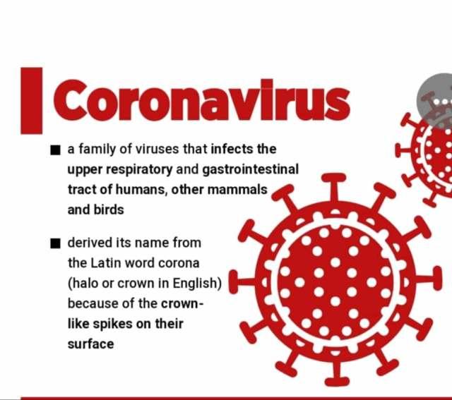 Image result for corona viruses