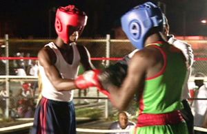 Amatuer Boxing