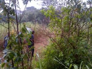 The area where the body was found.