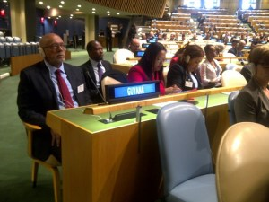 President and Team at UN Indigenous forum