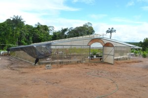 Malaysian Technology – one of the modern and well equipped green houses at the test farm. [GINA Photo]