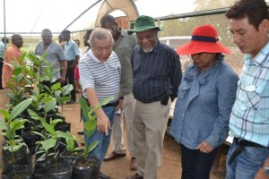 Prime Minister Samuel Hinds, Mrs. Yvonne Hinds, Chairman of Borion Guyana Inc., Kok-Tiong Wee, and Executive Director, Chiok-Boon Tan during a tour of the test farm at Kairuni. [GINA Photo]