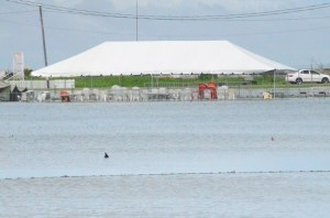 The waterlogged GDF ground.