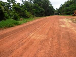 The Linden/Lethem road