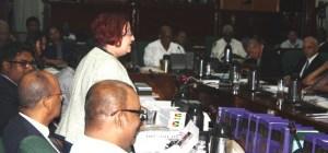 Opposition Chief Whip Gail Teixeira