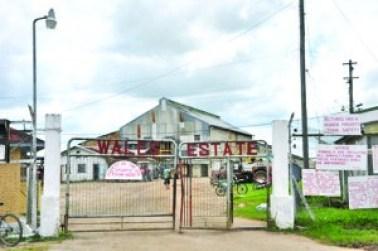 Wales Sugar Estate