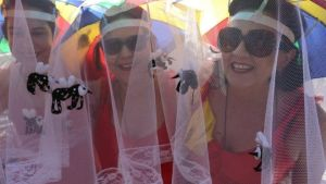Mosquito nets costumes have been popular in Recife's carnival