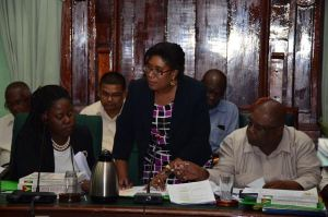 Minister of Public Telecommunication and Tourism, Catherine Hughes clarifying a point during the examination of the Budget 2016 Estimates of her Ministry