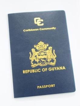 Passport2 (1)