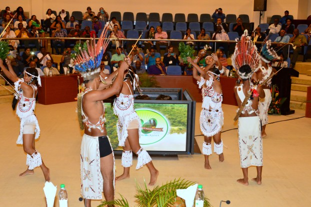 Members of the Surama Cultural Group performing for the audience 20th anniversary celebrations at the Arthur Chung Convention Centre