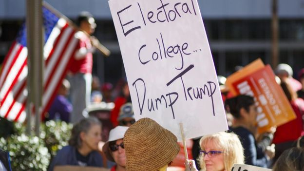 A protester in Los Angeles sends a message to the electors (EPA Image)