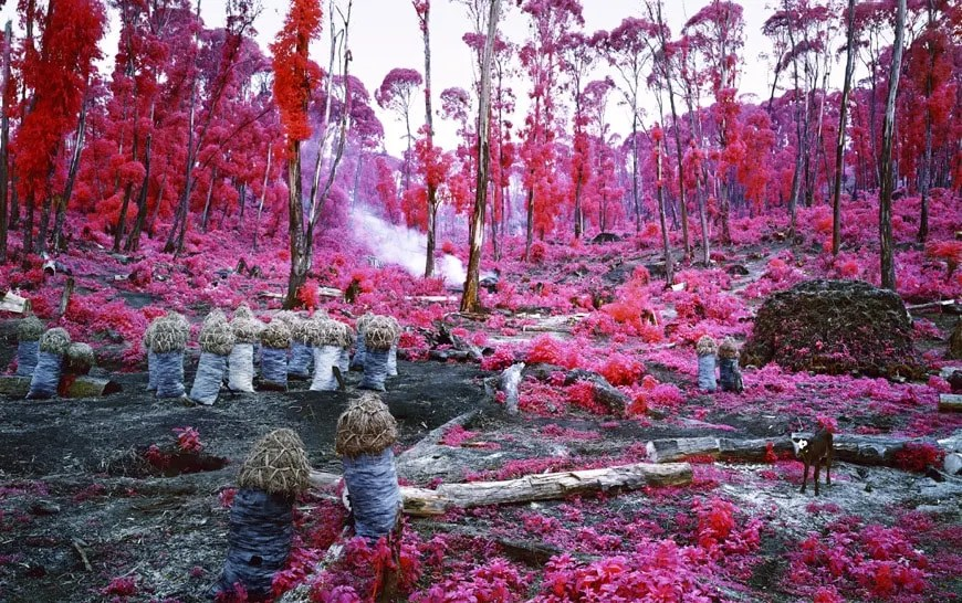 Danimarca  Richard Mosse al Museo Louisiana  Inexhibit
