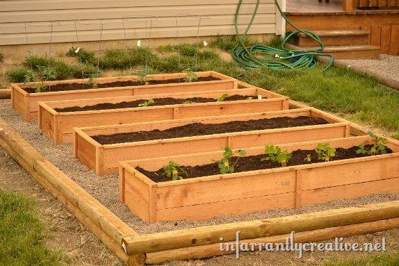 garden cedar boxes