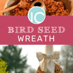 Brid Seed Wreath