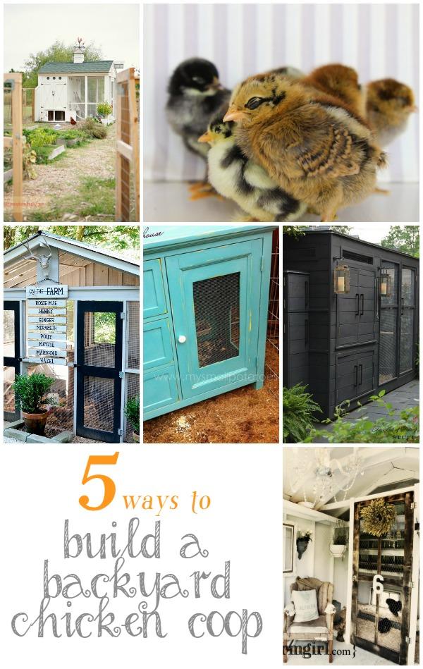 5 Ways to Build a Backyard Chicken Coop