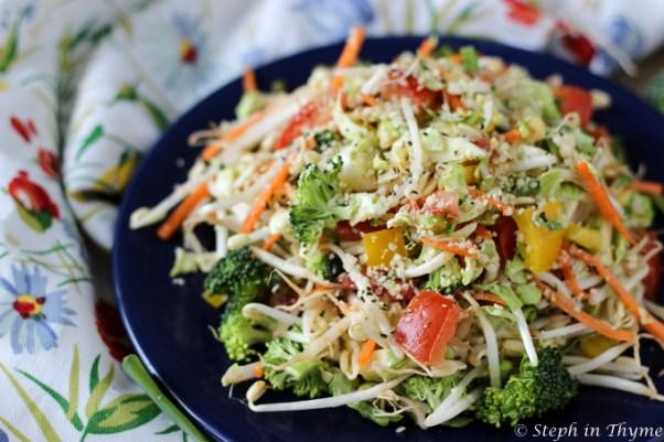 rainbow-salad-orange-dressing