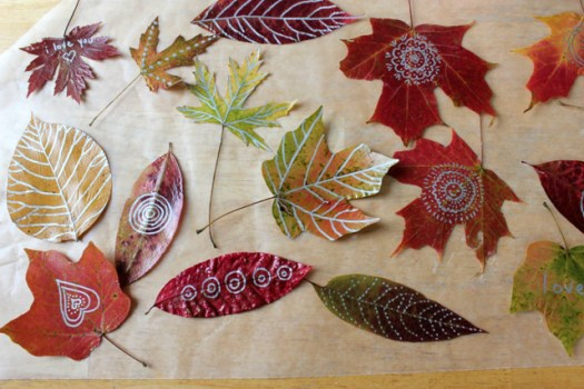 Autumn-Leaf-Art-Leaf-Drawing-and-Doodling