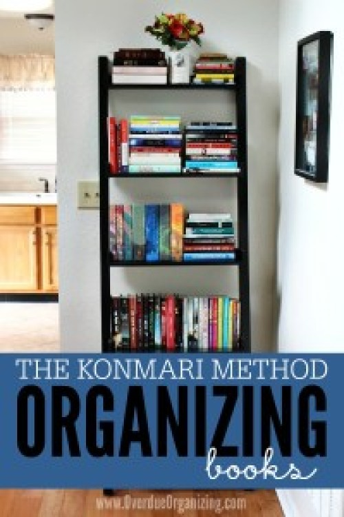Organizing Made Fun The cynic in us doubts that organizing will ever be fun, but the encouraging tone of this site at least makes us feel slightly more confident about our endeavors. Definitely check out the