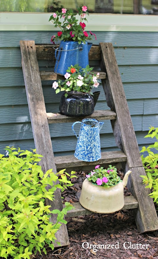 Add interest to your garden by using teapots and other vessels as planters!