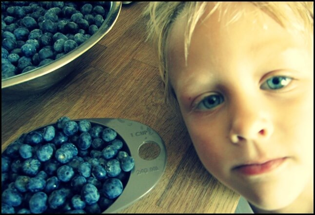 gav and the berries