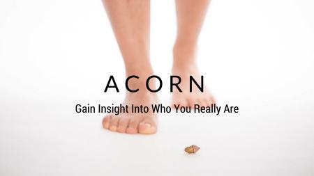 Acorn Class