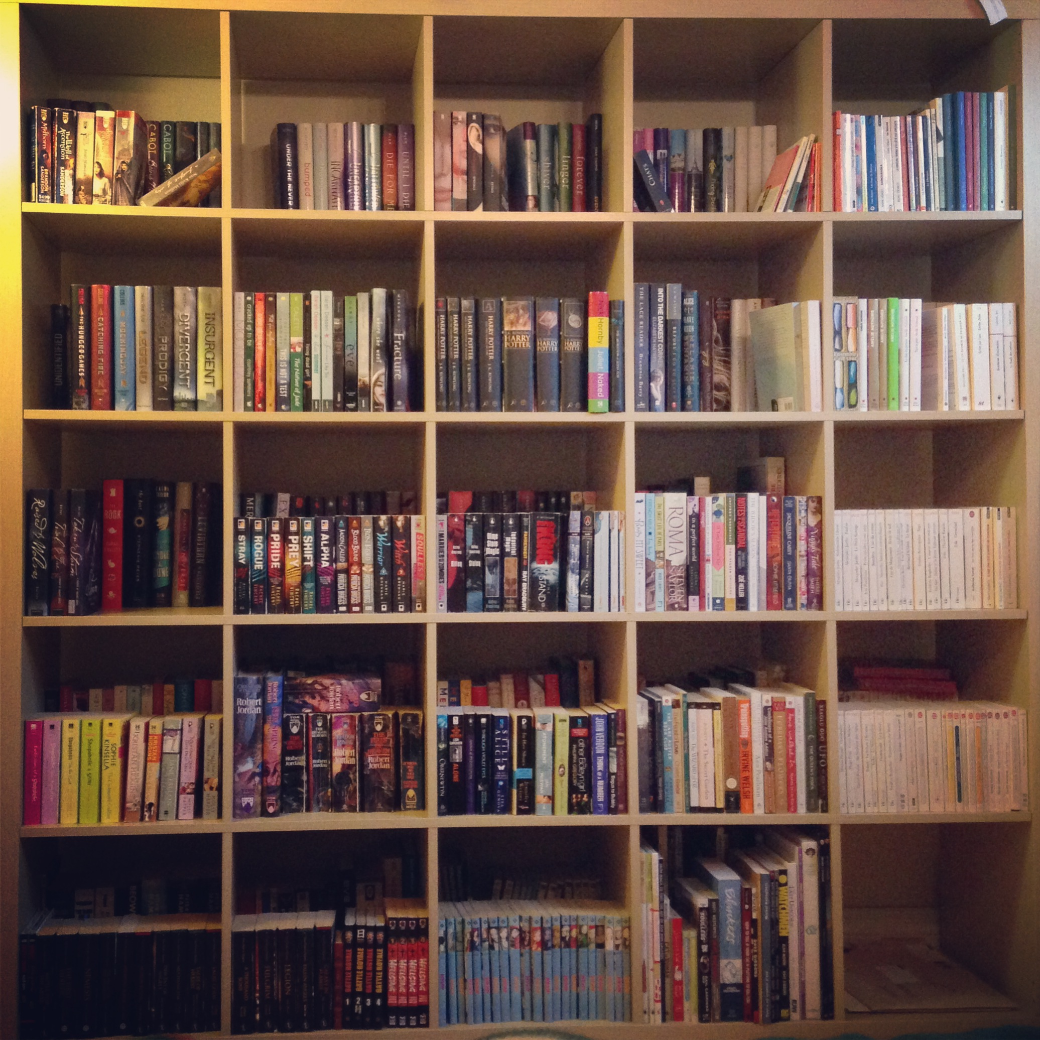 The Shelves Part 1 Or Tetris With Books