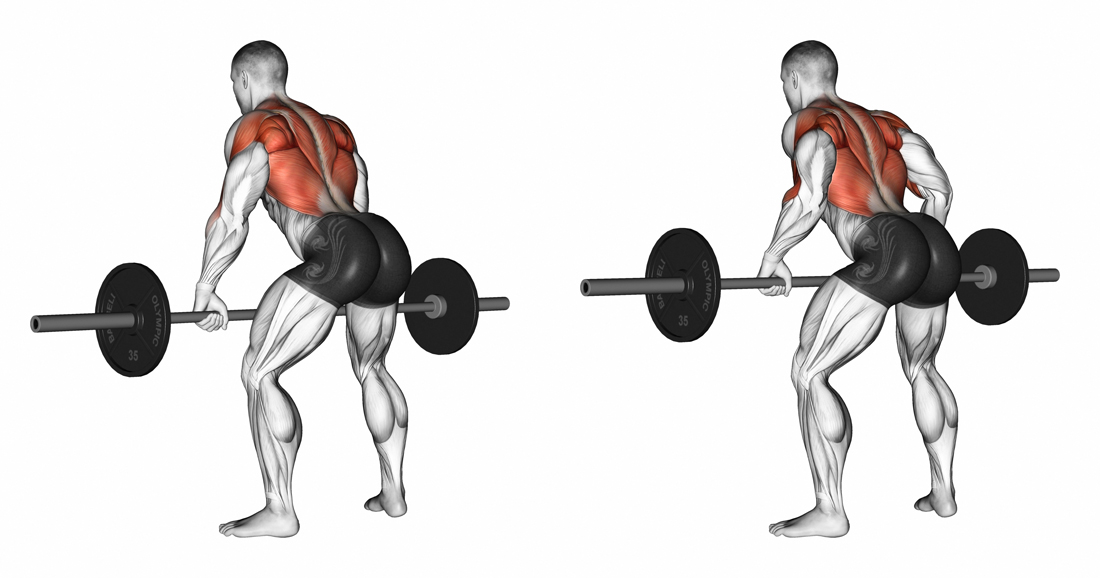 Best Back Exercise: What is the best exercise to build a