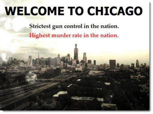 gun laws in illinois