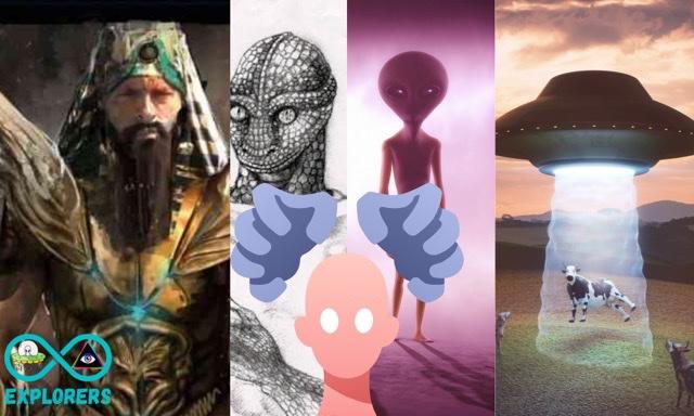Alien species that visit us