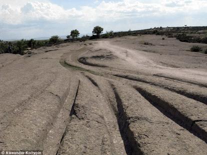 14 million year old vehicle tracks