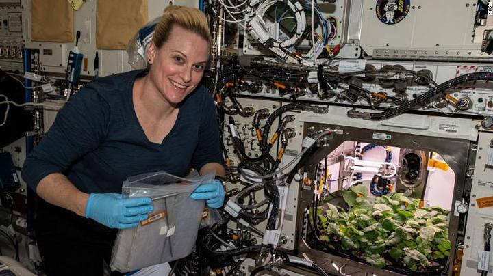 Unknown Microbes Discovered On International Space Station